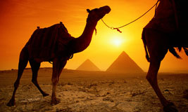 Ancient Egypt Tour