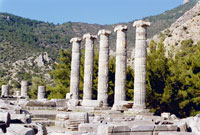 Priene - Kusadasi Package Programs