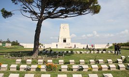 Daily Troy and Gallipoli Tour