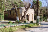 The House of Virgin Mary - Ephesus Tours